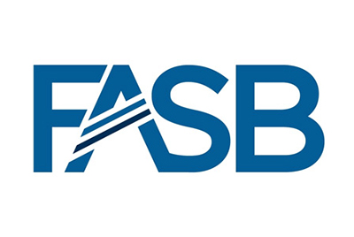 FASB Proposes Alternative to Accounting for Goodwill and Certain Identifiable Intangible Assets for Not-for-Profits