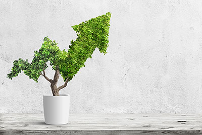 Six 2021 ESG Trends for Accounting and Finance Professionals