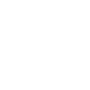 Icon_brain_SIDE_profile_WHT-01