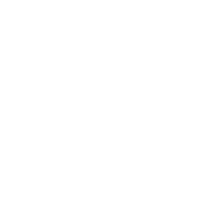 Icon_lightbulb_lightening_bolt_WHT-01